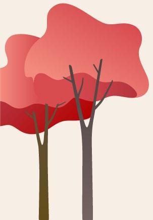 deux arbres automne